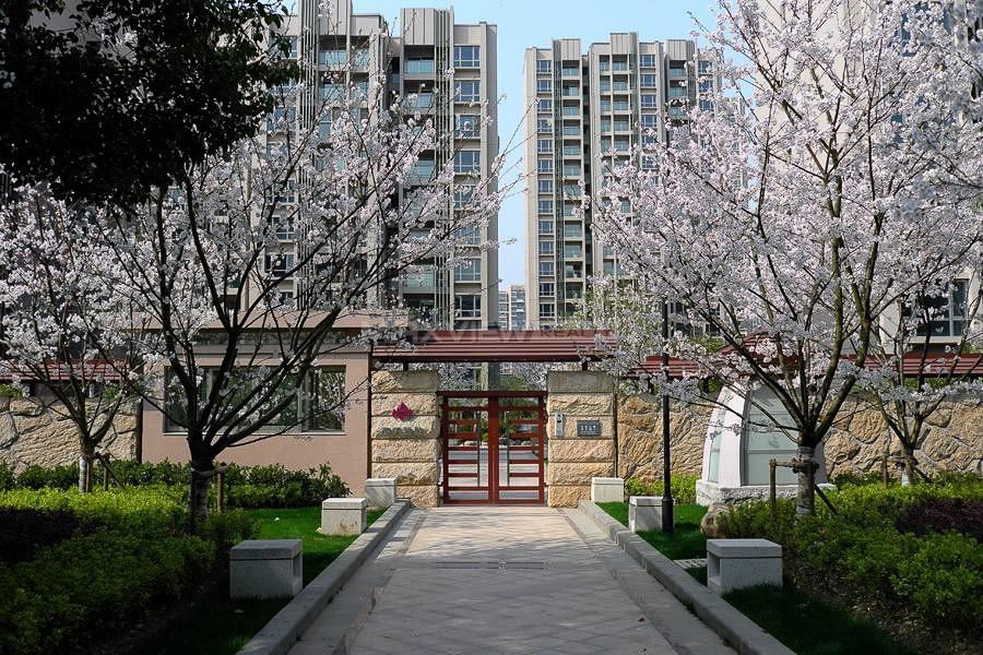 Grace Residence 和风雅致
